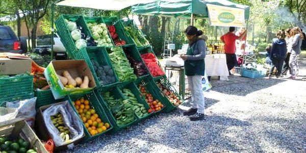 La Feria Verde de alimentos orgánicos, otro atractivo que suma la granja municipal Don Benito