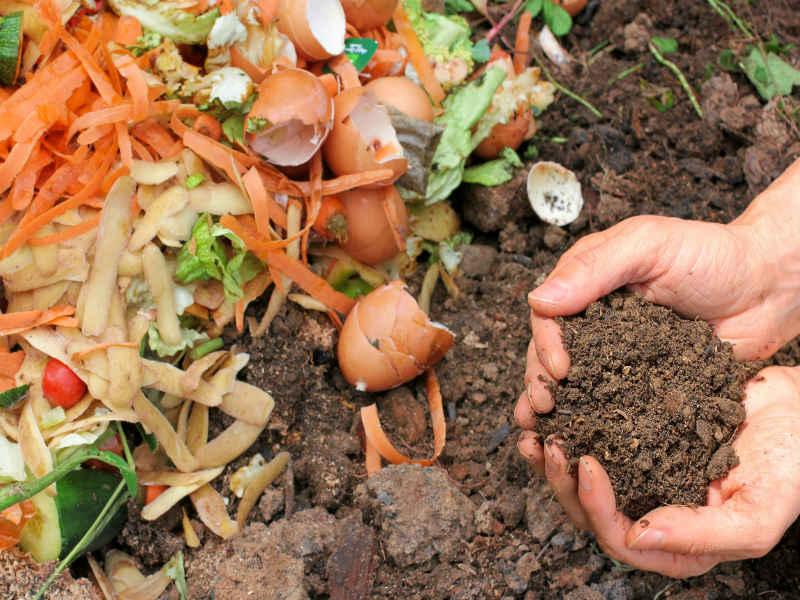 Según la UBA, el 42 % de los residuos pueden transformarse en abono para huertas